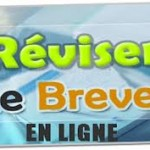 Sujet brevet de maths 2013 en France