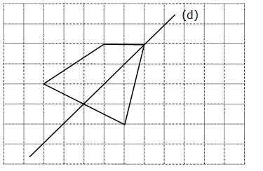 Contr le de maths sur les fractions en cinqui me 5 me - Symetrie a imprimer ...
