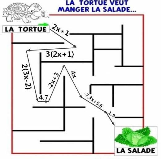 La tortue et la salade.