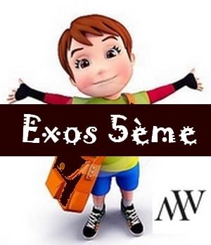 Exercices maths 5ème