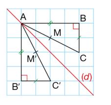 conservation symétrie
